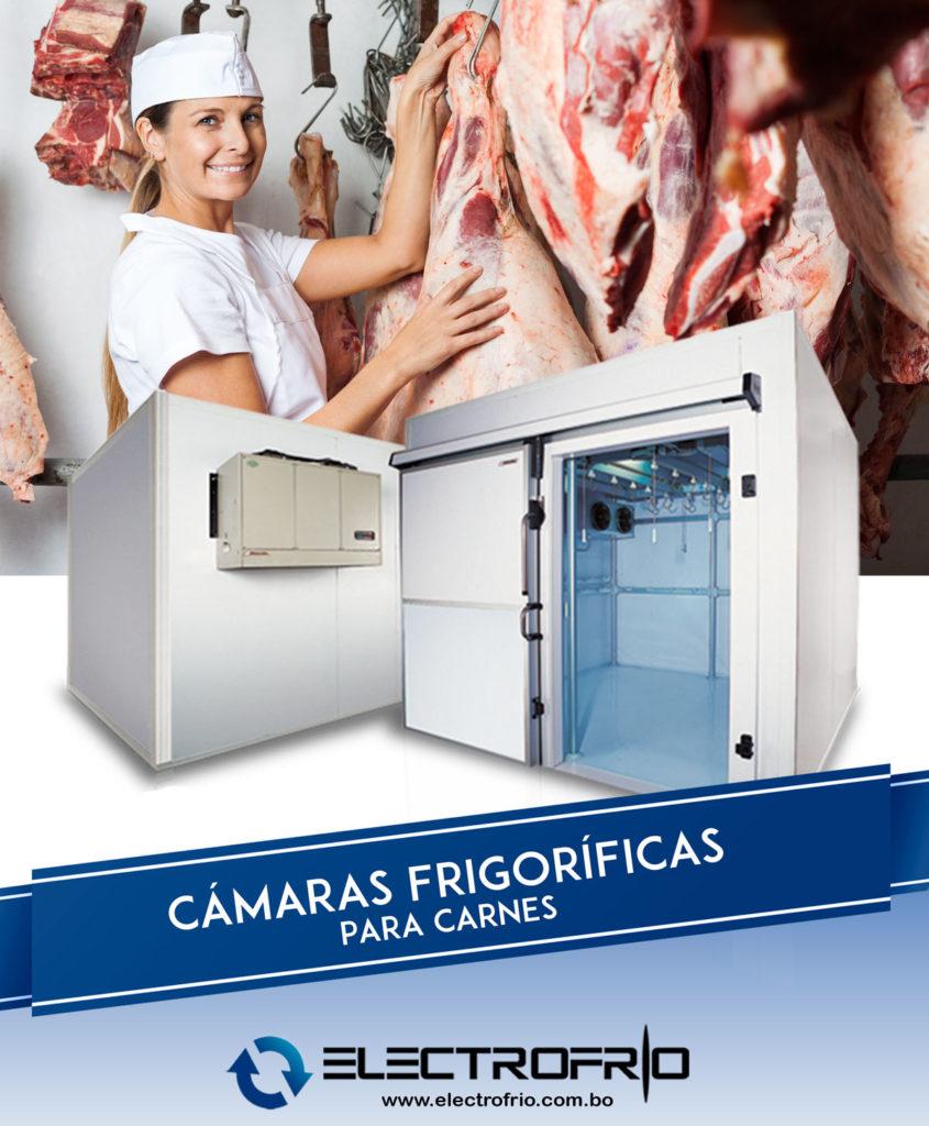 Electrofrío - Cámaras frigoríficas para la conservación de carnes 2