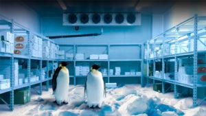 Electrofrío - Cámaras frigoríficas (Slide)