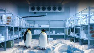 Electrofrío - Soluciones industriales en frío 2