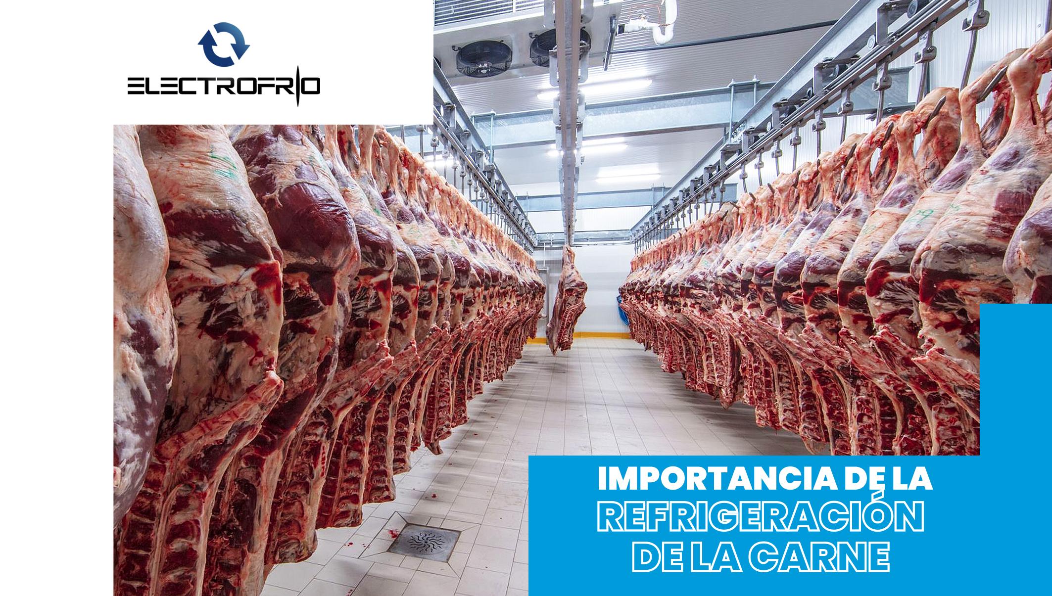 Importancia de Refrigeración de la Carne